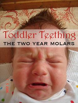 toddler teething wake ups